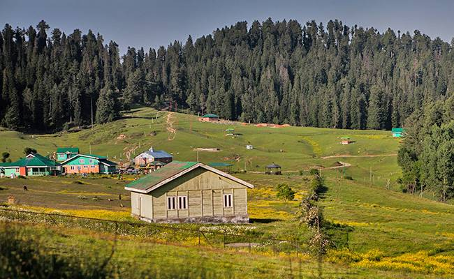 Offbeat Places to Visit in Jammu and Kashmir: Yusmarg