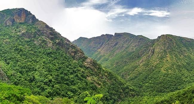 Kolli Hills - Offbeat Tamil Nadu