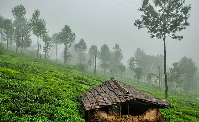 Kotagiri - Offbeat Tamil Nadu