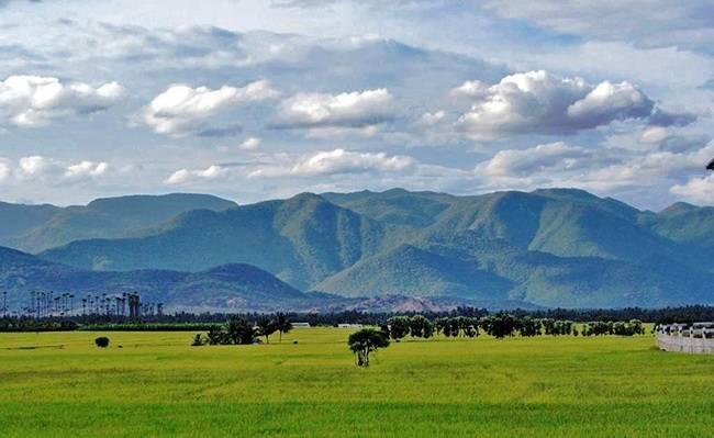 Pachamalai Hills - Offbeat Tamil Nadu