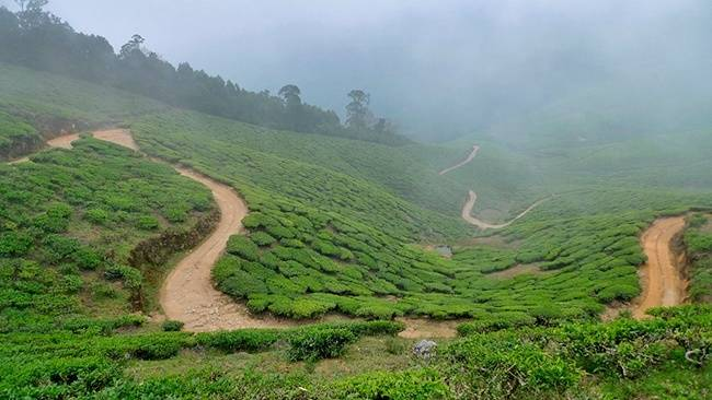 Theni - Offbeat Tamil Nadu