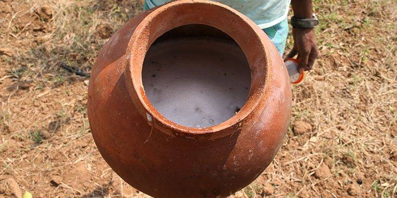 Activities To Experience In Kerala - Toddy in Kerala