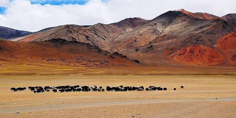Places near India-China Border: Demchok