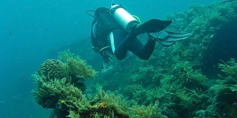 Wreck Diving - Best Scuba Diving Destination in India