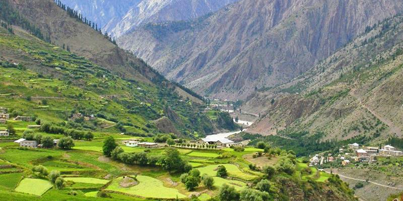 Green valley in Lahaul