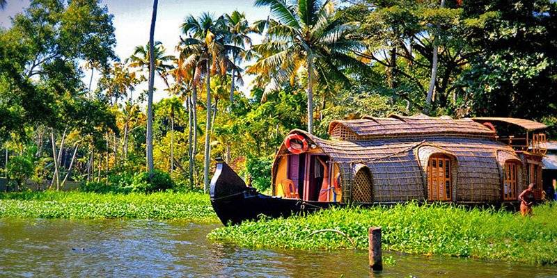 Top things to do in Kerala - kerala back waters cruise