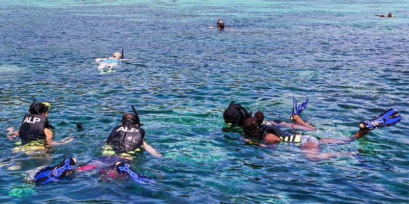 Things To Do in North Goa in - Snorkeling Trip