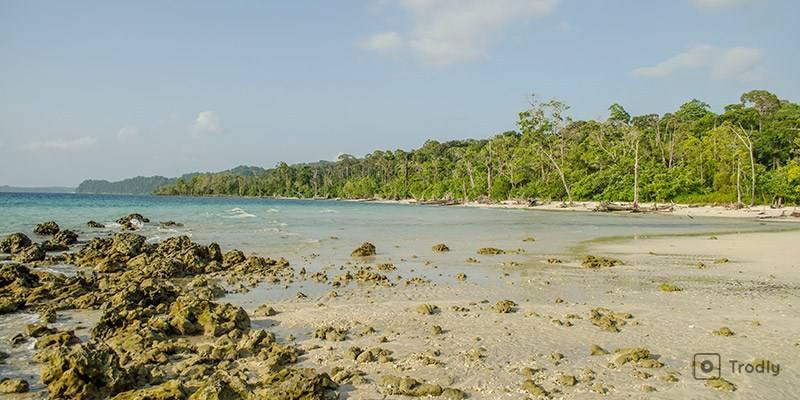 Ultimate Travel Guide to Andaman Islands - Places to See in Andaman