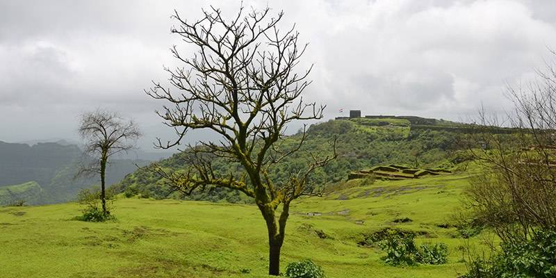Treks and Hikes around Pune & Mumbai - Raigad Fort