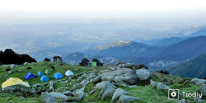 Triund Trek: A Complete Guide - Triund Camp