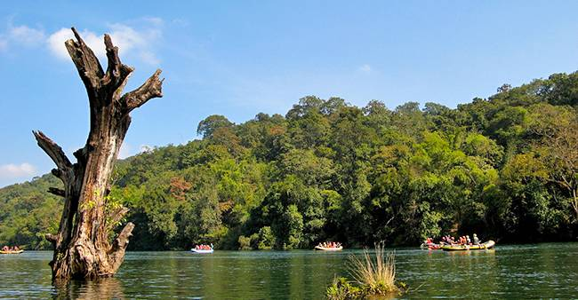 Dandeli National Park
