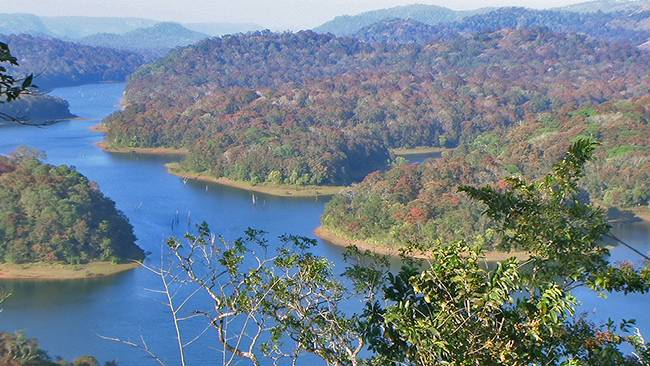 Wildlife Destinations in South India - Periyar National Park